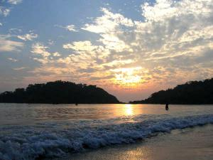 Topmost 5 Reasons Visit Goa The Summer Hindi