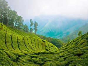 Best Trekking Destination In South India Hindi