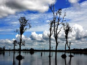 Places To Visit In Digboi Assam Hindi