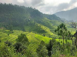 Places To Visit In Bageshwar Uttarakhand Hindi