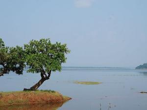 Visit To Pakhal Wildlife Sanctuary Warangal Telangana Hindi