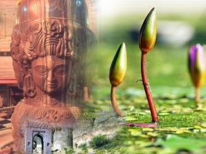 Places To Visit In Mandsaur Madhya Pradesh
