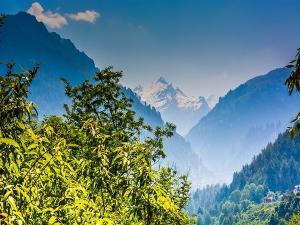 Majathal Wildlife Sanctuary Solan Himachal Pradesh