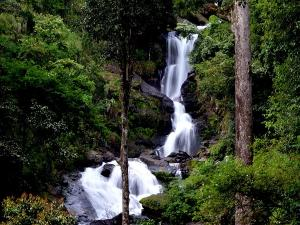 Enjoy The Beauty Of Iruppu Waterfall In Karnataka