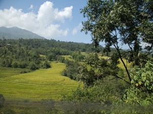 Places To Visit In Dimapur Things To Do And How To Reach