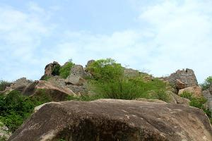Travel Guide To Mahbubnagar In Telangana