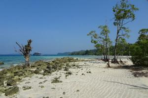Travel Guide To Diglipur In Andaman And Nicobar Islands