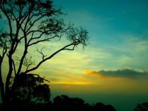 Top Places Visit South India June