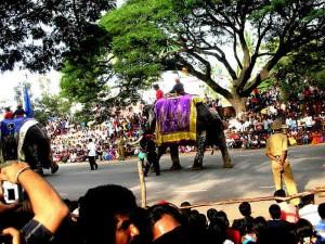 Mysore Dasara 2014 A Grand Spectacle 000428 Pg