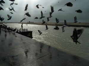 The Most Beautiful City Gujarat