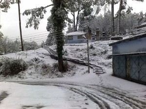 Places Visit Ranikhet