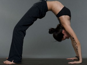 Top Yoga Centers In India