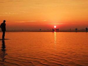 Mysterious Hide And Seek Beach Odisha Chandipur Beach Hindi