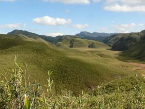 Dzukou Valley In Nagaland Hindi