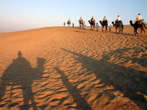 Desert Triangle Tour In India Hindi