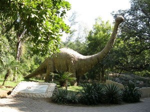 Fossil Parks In India Hindi