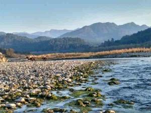 Dehradun Nainital Drive Among The Clouds Hindi