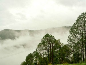 Visit Syalsaur A Delight For Nature Lovers Hindi