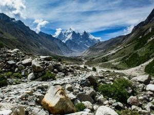 Experience The Alpine Wilderness At Gangotri National Park Hindi