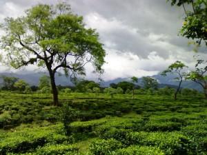 Best Places Visit September Hindi