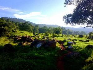 Bangalore Yelagiri Hills An Express Expedition Hindi