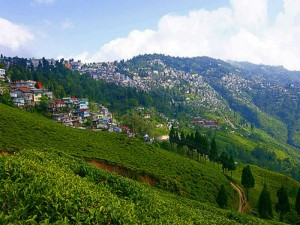 The Hidden Getaway Mungpoo From Darjeeling Hindi