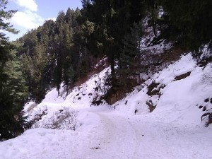Offbeat Places Around Shimla Every Traveller Must Explore Hindi