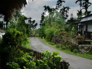 Visit Mawlynnong The Cleanest Village Asia Hindi