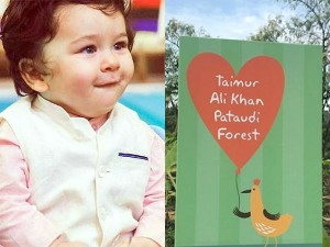 Do You Know About Taimur Ali Khan Receives 1000 Sq Ft Forest As A Birthday Gift Hindi