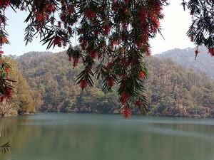 Uttarakhand Naukuchiatal Tourism