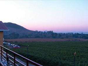 Travel Vineyards India Hindi