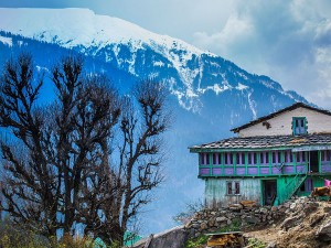 Offeabt Destination Pulga Himachal Pradesh Hindi