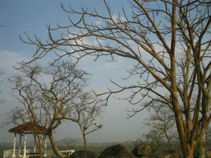 Topmost Places Visit Jharkhand