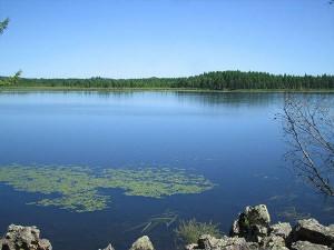 Top 5 Beautiful Lakes Assam Hindi
