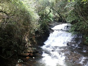 Want Travel May Then Shillong Is The Best Place Visit Hindi