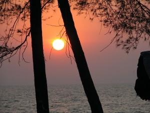 Best 5 Places To Visit In Kozhikode Calicut Kerala Hindi