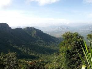 Places To Visit In Biligiriranga Hills Karnataka Hindi