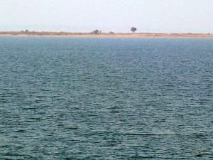 Best Weekend Getaways Near Bhubaneswar Odisha