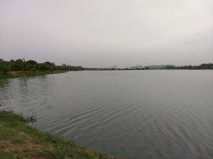 Visit The Two Hundred Year Old Jakkur Lake Bangalore Hindi