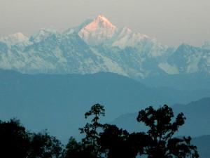 Rikisum Hidden Gem Kalimpong Hindi