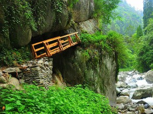 Thrilling Treks Kasol Hindi