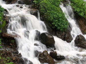 Monsoon Places To Visit In Amboli Maharashtra Hindi