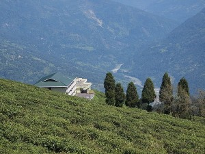 Summer Destination In Sikkim Namchi North East Hindi