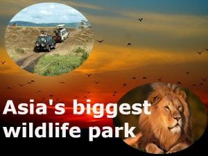 Asia Biggest Etawah Safari Park Uttar Pradesh Hindi