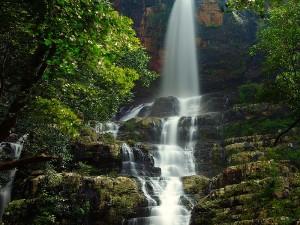 Famous Tourist Places To Visit In Srikalahasti Andhra Pradesh