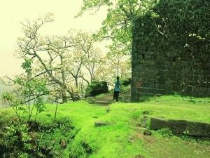 Best Tourist Places Visit Karnala Raigad