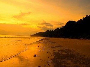Havelock Island Andaman Attractions Timings Things Do