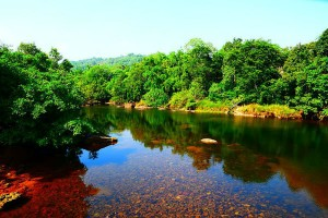Ambasamudram Travel Guide