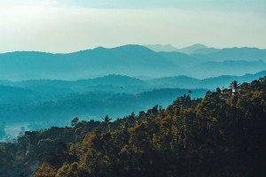 Offbeat Things To Do And Places To Visit In Coorg