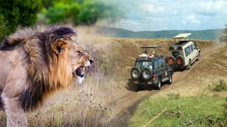 नाहरगढ़ में पर्यटक अब ले पाएंगे इस रोमांचक सफारी का आनंद
